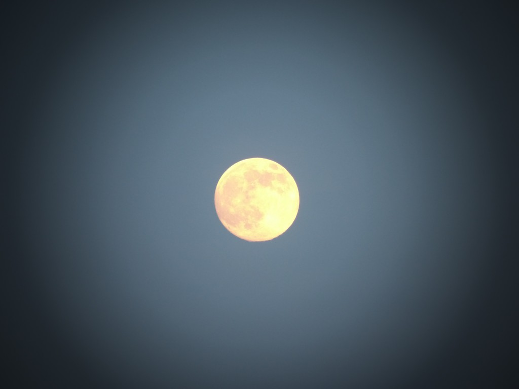 8 9 14 Pre Supermoon Photos24 Myperdidokey Com